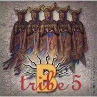 B-Tribe - 2003